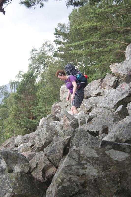 Norwegian scree slope
